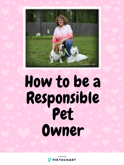 woman with two dogs on a responsible pet owner poster