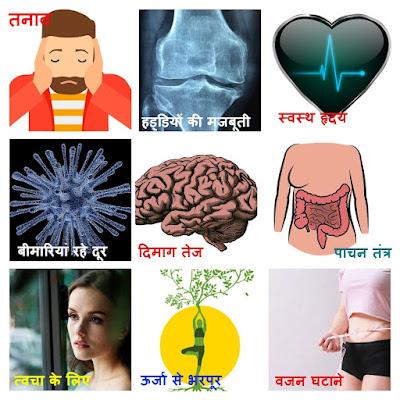कार्डियो एक्सरसाइज क्या है और इसे करने के 10 बड़े फायदे |  what is Cardio exercise and its benefits in hindi?