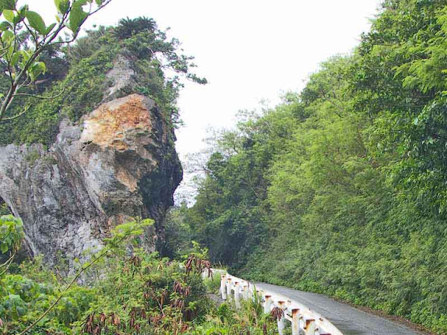 rock, mountain,road,guardrail,vegetation