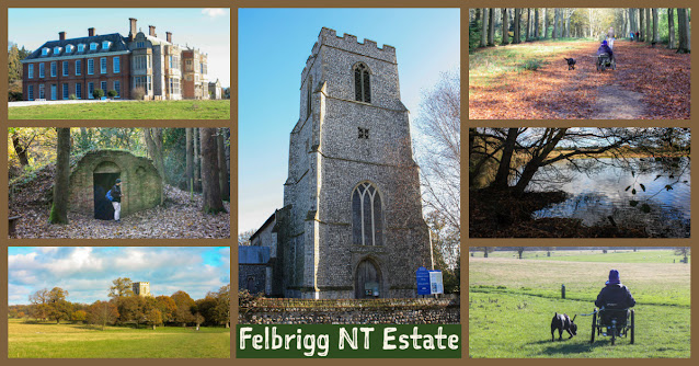 A collage of photos showing Felbrigg Hall, woodland paths, the church, reflections in the lake and me in my trike with Liggy, my black labrador.