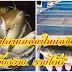 เลี้ยงปลาหมอนาในบ่อซีเมนต์ เลี้ยงง่าย รายได้ดี !!