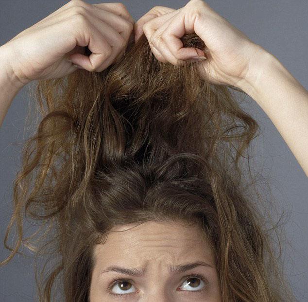 3 علاجات طبيعية للشعر الجاف تجدينها في مطبخك