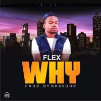 Download: Flex – Why