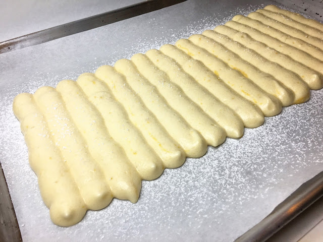 Piped Sheet Tray of Lady Fingers