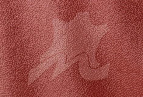Piele naturala canapele Prescott - Piele Naturala de vanzare Bucuresti - piele-naturala-tapiterie