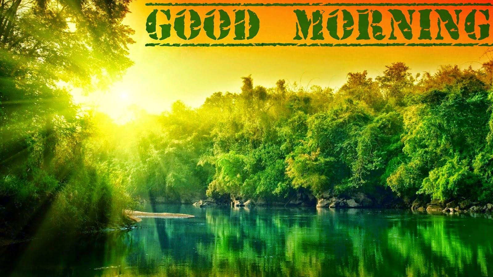 Download Free Hd Good Morning Wallpaper
