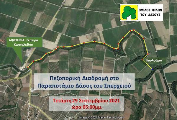 Πεζοπορική διαδρομή στο παραπόταμιο δάσος του Σπερχειού