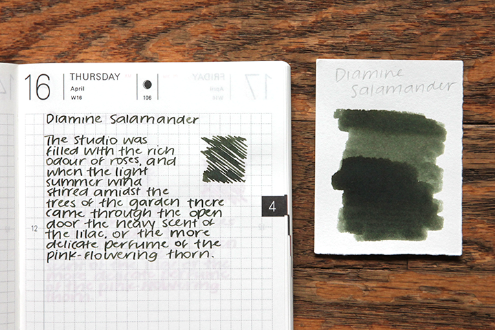 review: diamine salamander
