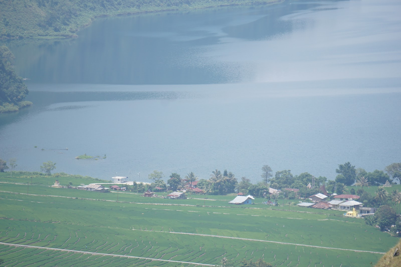 Desa Wisata Meat Balige Pesona Tersembunyi Keindahan Danau