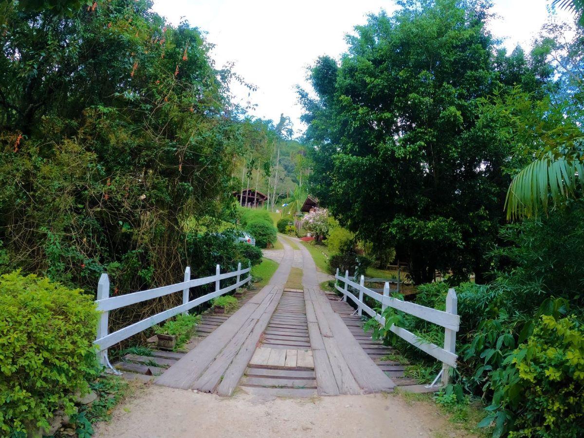 area verde e ponte em pousada