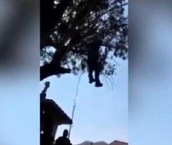 57-years-old Albanian found hanged on tree in Italy