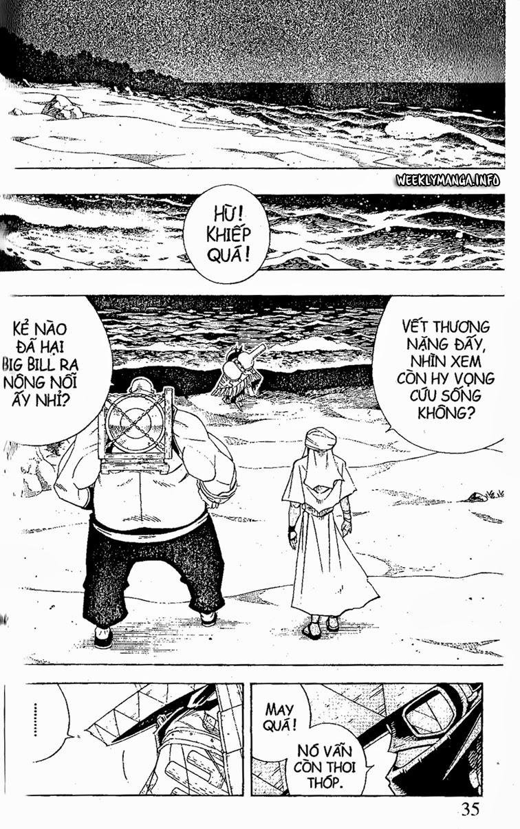 Shaman King [Vua pháp thuật] chap 186 trang 10
