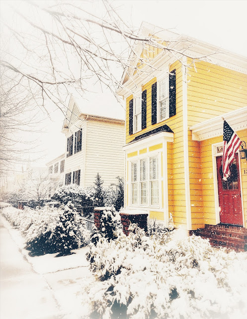 A pop of color in Raleigh, NC in this winter scene.