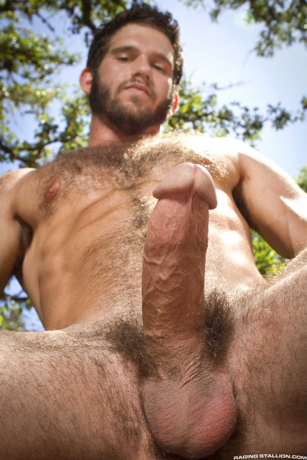 Gay male hairy porn