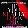 Letra : If You Really Love Me (How Will I Know) - DAVID GUETTA [Traducción, Español]