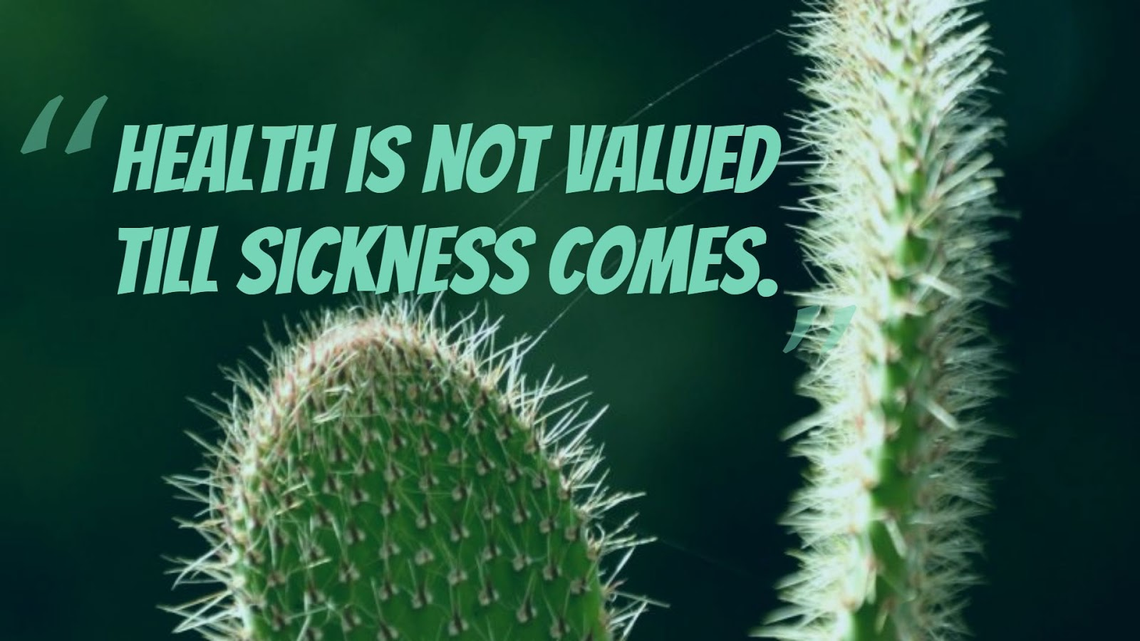 Hate Sickness