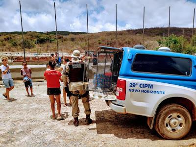 Novo Horizonte /BA: Polícia Militar  doa brinquedos para crianças em dois povoados do município