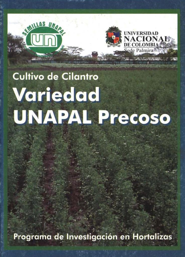 Cultivo de cilantro variedad UNAPAL precoso
