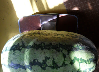 Самый большой арбузик этого сезона - около 9 кг!