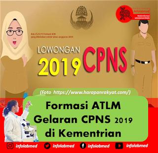 Formasi ATLM Gelaran CPNS 2019 di Kementrian