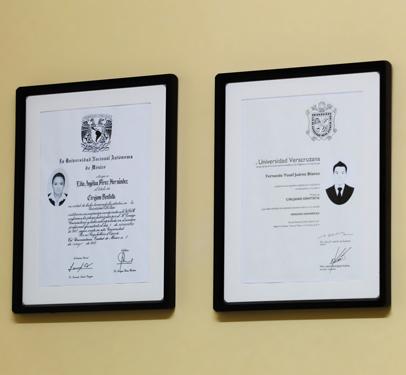 Títulos profesionales de los doctores Fernando Juárez y Lilia Pérez, dentistas de Veracruz.