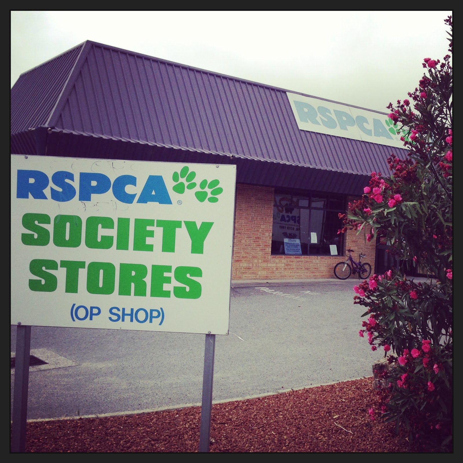 Dog Days Are Over - RSPCA Society Store Bibra Lake Review