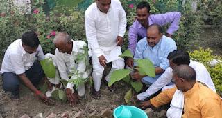 बिना वृक्ष के मानव जीवन की परिकल्पना सम्भव नहीं: शिव गोविन्द    #NayaSaberaNetwork