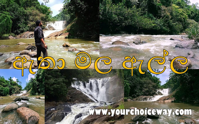 ඇතා මල ඇල්ල (Atha Mala Ella) - Your Choice Way