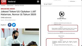 Terungkap! Pakar IT Temukan UU Ciptaker Yang Baru Ditandatangani Jokowi Ternyata Bermasalah