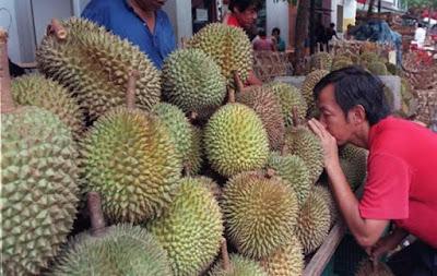 tips pilih durian elok dan sedap
