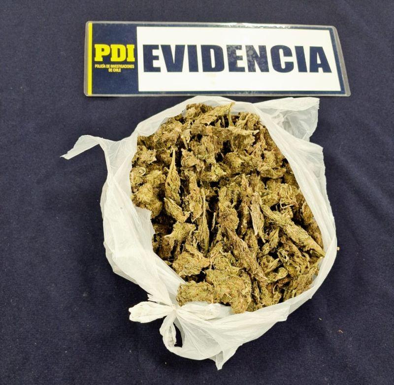 Joven de 21 años fue detenido portando una mochila con medio kilo de cannabis sativa