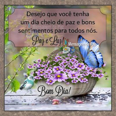 Desejo que você tenha  um dia cheio de paz  e bons sentimentos para todos nós. Bom Dia!