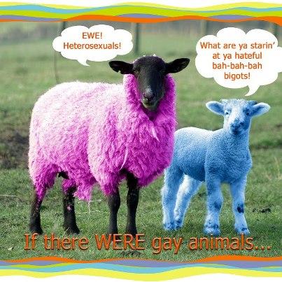 July heterosexual awareness month