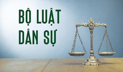 Luật Dân sự 2015 điều chỉnh những vấn đề gì? Phạm vi điều chỉnh của Bộ Luật Dân sự ?