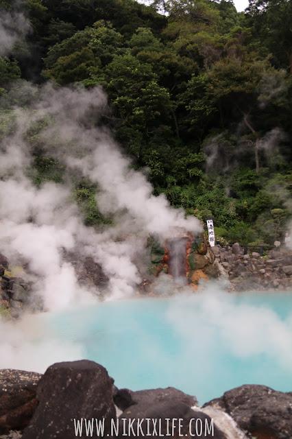 【日本。九州】別府地獄周遊:欣賞自然奇觀! 6