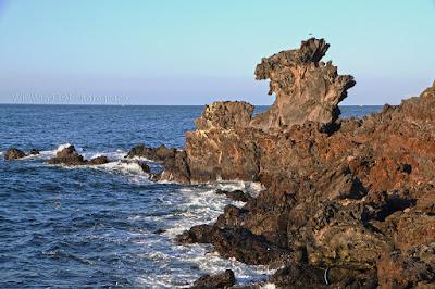 Dragon Head Rock - 6D4N Amazing Korea Jeju