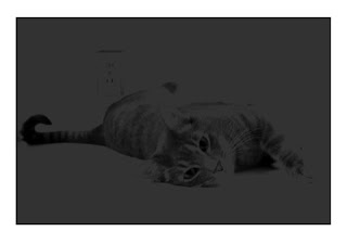 Grayscale image.