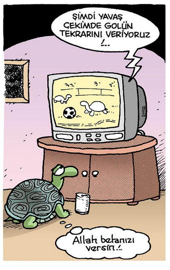 Kaplumbağa Futbolu