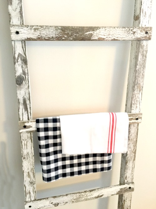 Chippy ladder with fabric