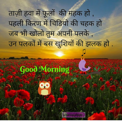 Good morning images for Whatsapp in Hindi love