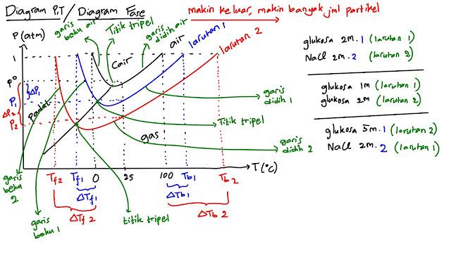 Diagram P-T, Diagram Fase