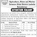 Lasbela University of Agriculture Lasbela Jobs