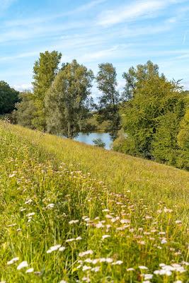 Herbsthäuser Bierwanderweg | Herbsthausen | Wandern Bad Mergentheim 10