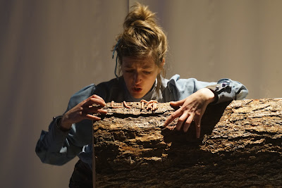 Vahan Salorian: Goldilocks - Alice Privett - The Opera Story (Photo Clive Boursnell)