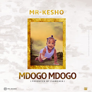 Mr Kesho – Mdogo mdogo mp3 download