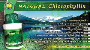 Gambar Natural Chlorophyllin Nasa