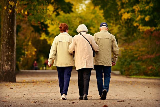"""Resultado de imagen de pasear mayores"""""""