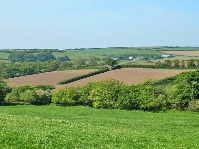 Green & ploughed fields, Cornwall