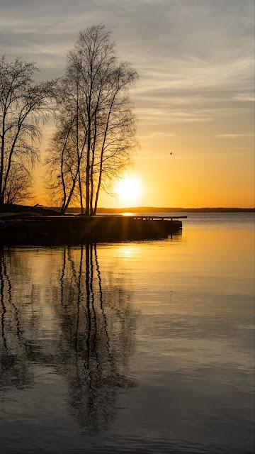 Plano de Fundo HD Pôr do Sol, Lago, Árvores, Reflexo