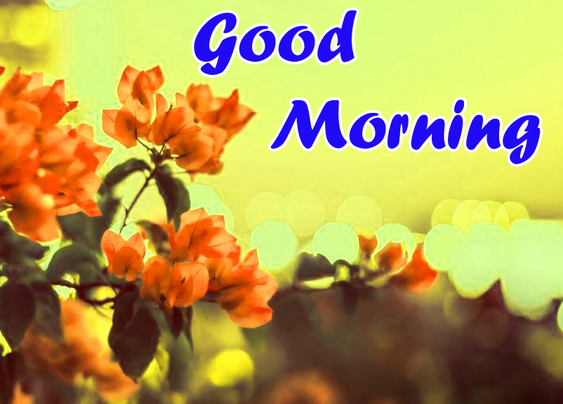 Sweet good morning images for whatsapp free download
